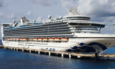 Cruise Ship Returns to Florida With Hundreds of Sickened Passengers