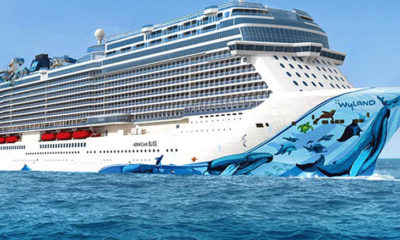 U.S. Cruise Operations Suspended Through Mid-September