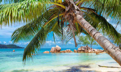 CDC Urges Americans to Avoid Travel to The Bahamas